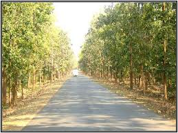 path nirman jharkhand