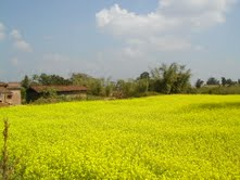 jharkhandstatenews,Jharkhand Natural Images, environmental