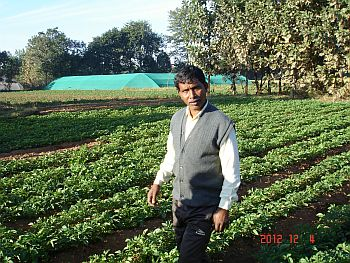 Jharkhand Farmer ,Farmers in Jharkhand,  farmers flourish in Jharkhand